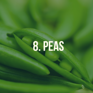 10 foods you can grow at home - peas