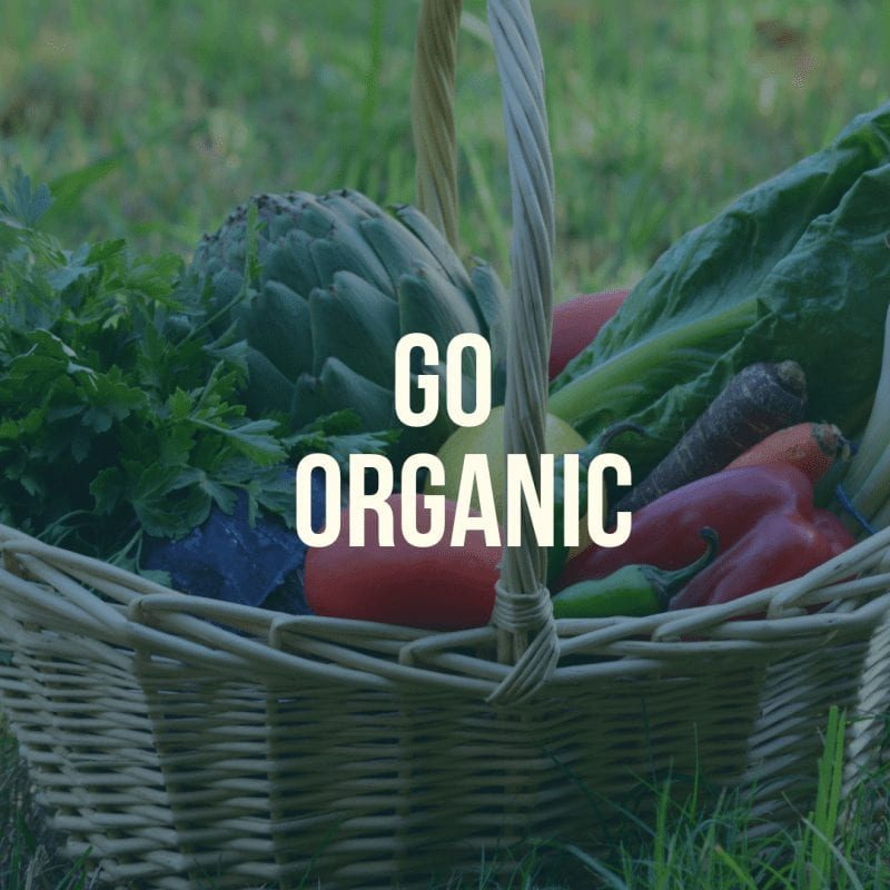 Go Organic Sustainable Easter Tips